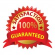 Satisfaction Guaranteed — Vector de stock
