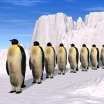 Penguins walk — Stock Photo #3344290