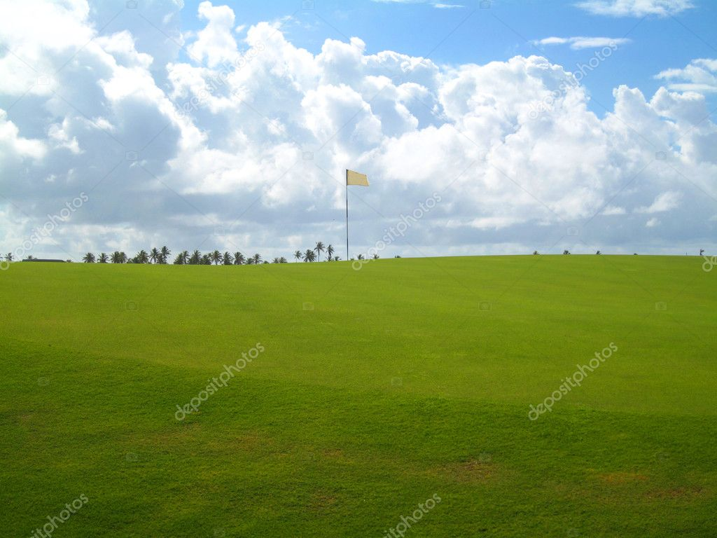 Palm trees on luxury golf course in Brazil                              Stok fotoraf #2832217