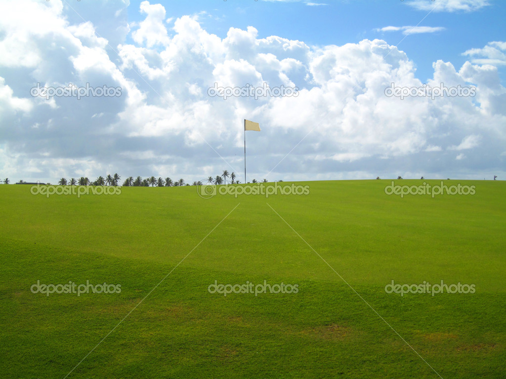 Palm trees on luxury golf course in Brazil                             — Stock fotografie #2832217