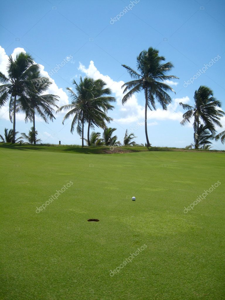 Palm trees on luxury golf course in Brazil                             — Stock Photo #2832228