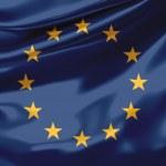 European Union Flag - UE — Stock Photo