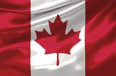 Canadian Flag — Stock Photo