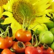 Stock Photo: Fruits in basket summer with sunflower