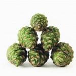 Green pine cones — Stock Photo #2818705