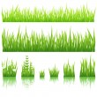 Green grass - Imagens vectoriais em stock