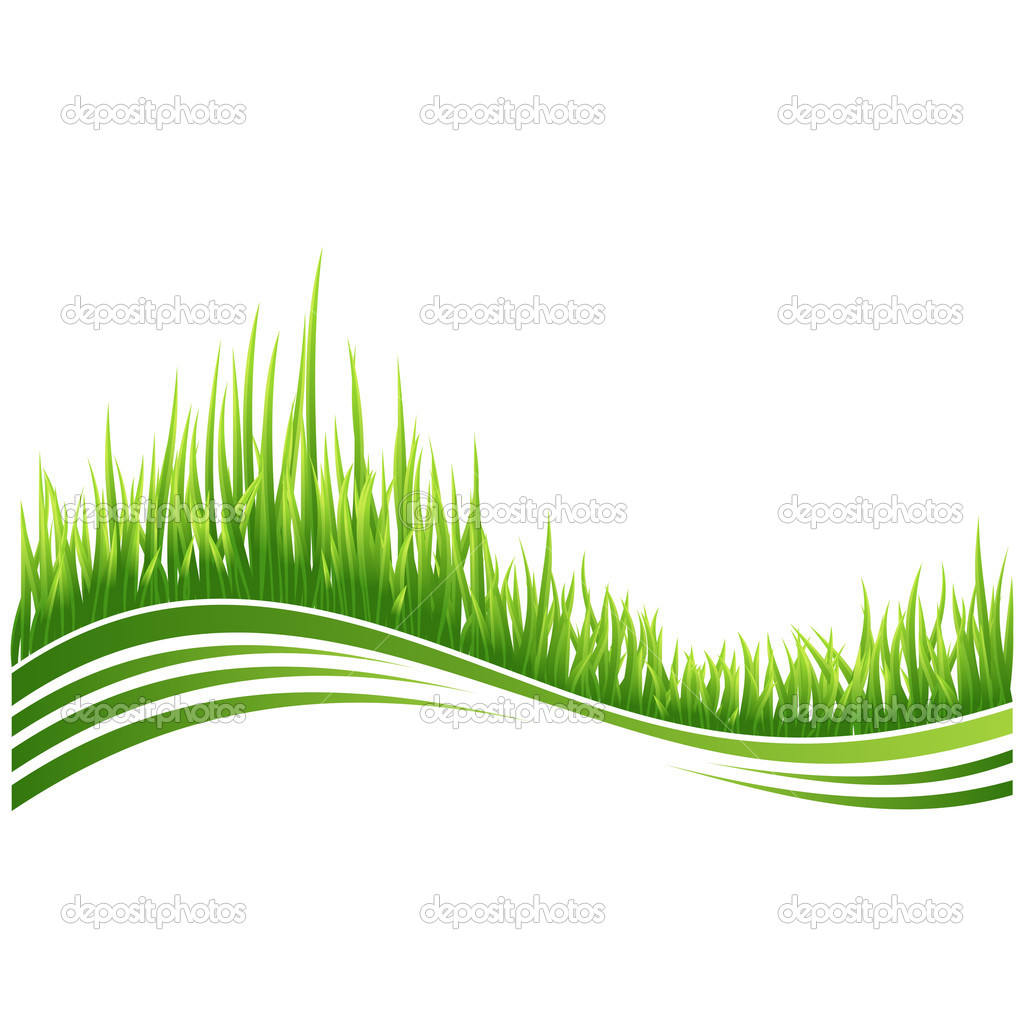 Vector illustration of green grass wave background. — Stock Vector #3743857