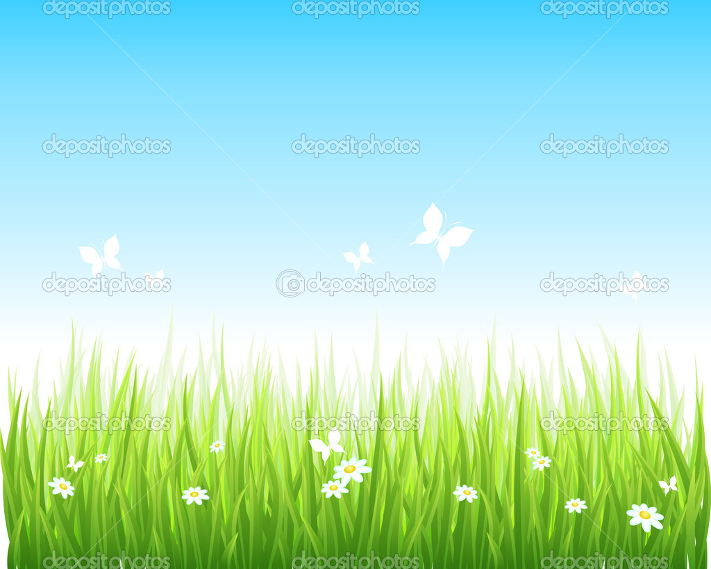 Vector illuastration grassy green field and blue sky. — Stock Vector #3922826