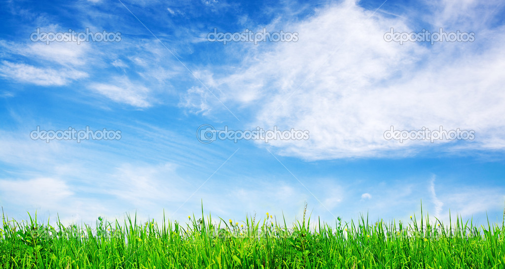 Green gras and vibrant  sky — Stock Photo #2816362