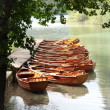 Canoes — Stock Photo #2833038