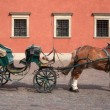 Foto Stock: Cart and Horse