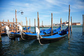 The gran canal in Venice — Stock Photo