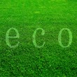 Eco grass — Stock Photo