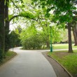 Path in the park — Stock Photo #3054655