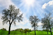 Belle journée de printemps — Photo