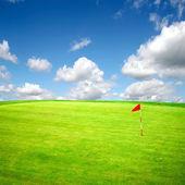 Summer golf field — Stock Photo
