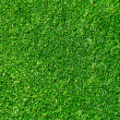 Grass background - golf field - Stock Photo