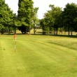 Stock Photo: Green golf course landscape