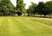 Paesaggio verde campo da golf — Foto Stock