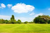 Golf fields landscape — Stock Photo