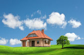 New house on a green hill — Stock Photo