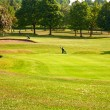 Golf field — Stock Photo #3407533