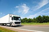 Caminhão dirigindo na estrada do país — Foto Stock