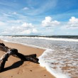 Beach Landscape — Stock Photo