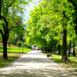 Peaceful park in spring — Stock fotografie