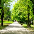 Peaceful park in spring - Stock Photo