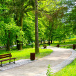 Stock Photo: Beautiful park