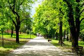 Peaceful park in spring — Stock Photo