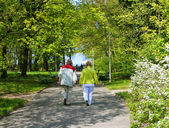 Senior couple walking at the park — Stock Photo