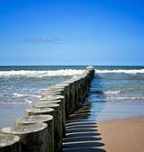 Beautiful coast scene — Stock Photo