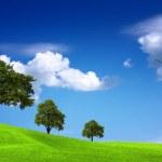 Green ecology panorama — Stock Photo