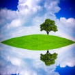 Global ecology concept — Stock Photo