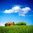 House on green field — Stock Photo