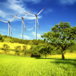 Windmill — Stock Photo #3025982