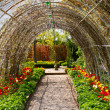 Garden tunnels — Stock Photo