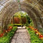 Garden tunnels — Stock Photo