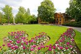 Tulipes dans le parc, prague — Photo