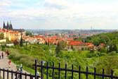 Beautiful Prague — Stock Photo