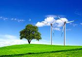 Green ecology — Stock Photo