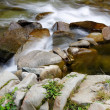 mountain river — Stock Photo #3138566