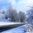 Cold and snowy winter road - Stock Photo