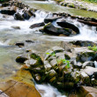 Small stream with waterfalls — Stock Photo