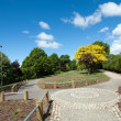 Beautiful park — Stock Photo #3214534