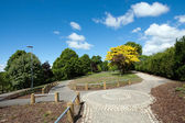 Hermoso parque — Foto de Stock