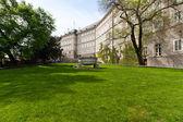 Hermoso parque en Praga — Stockfoto