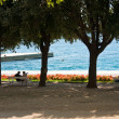 Stock Photo: Coast alley in Zadar